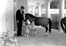 President John F. Kennedy and children with pony Macaroni 1962 - New 8x10 Photo