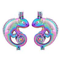 5X Rainbow Color 3D Chameleon Pearl Cage Locket Pendant Essential Oil Diffuser