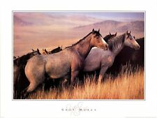 Gray Mares by David Stoecklein Art Print Poster - Horse Cowboy Western 27x36