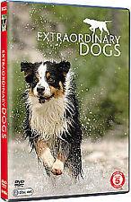 Extraordinay dogs dv.276 mins.