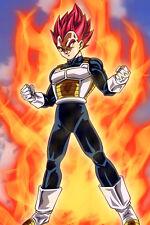 Dragon Ball Super Vegeta Super Saiyan God 12inx18in Free Shipping