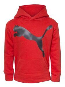 Puma Hooded Sweatshirt Little Boy's Pullover