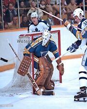 Nhl St. Louis Blues Goalie Mike Luit Color Game Action 8 X 10 Photo Picture