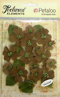 Small 21-33mm with Centre & 6 Leaves DOGWOOD x 24 Canvas NATURAL Textured Pet E