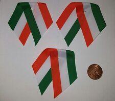 Irish Ireland St Patrik day Patriotic Flag  ribbon Pin Badge x3