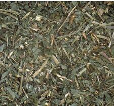 GROUND IVY Loose Herb 100g Respiratory & Flu Remedy