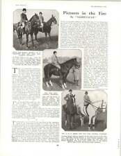 1929 Quorn Meet Robinson Greenall Dickson Averill Furness Cantilever Shoes