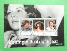 Persoonlijke vel 3012-D-8 Koningin Beatrix 75 jaar postfris