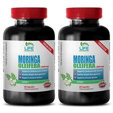 immune support oxbow - MORINGA OLIEFERA 1200MG 2B - moringa oleifera live plant