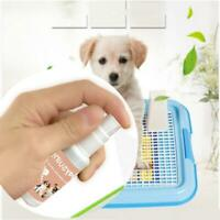 30ml Dog Potty Training Aid Puppy Cat Pet Toilet Training Spray Pet Trainin Q3P6