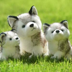 Cute Simulation Pet Dog Realistic Husky Pomsk Soft Stuffed Plush Toy Doll Kids