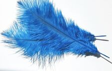 Ostrich Feathers (Pack of 4) Turquoise coloured Feathers approx 40 cms long
