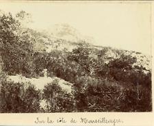 France, Sur la côte de Marseilleveyre, ca.1903, Vintage citrate print  Vintage c