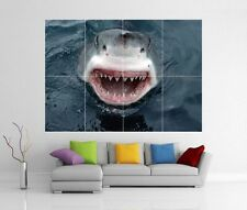 GREAT WHITE SHARK ATTACK GIANT WALL ART PRINT PICTURE POSTER H244