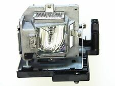 OPTOMA BL-FP180D FACTORY ORIGINAL BULB IN GENERIC HOUSING FOR MODEL DS317