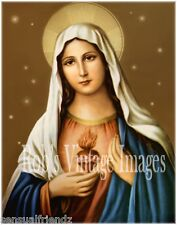 Virgin Mary picture Sacred Heart of Mary Virgen María Poster Blessed Mother