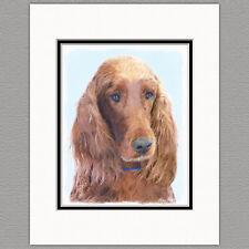 Irish Setter Dog Original Art Print 8x10 Matted to 11x14
