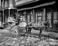 Historical Photograph of a New Orleans Milk Cart Delivery Wagon 1903   8x10