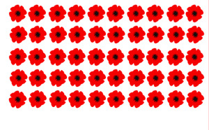 x 40 Poppy Remembrance vinyl decal stickers craft diy Lest We Forget car home