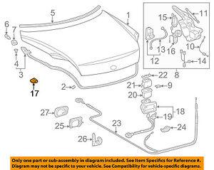 64571-24020 Toyota Cover, luggage compartment door hinge, rh 6457124020, New Gen