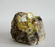 Native Sulfur, Calcite, Bitumen on Limestone. Russia