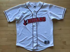 INDIANAPOLIS INDIANS OT Sports Minor League Baseball JERSEY Sewn Mens Sz L