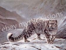 Charles Frace SNOW LEOPARD CANVAS  Art