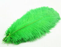 Wholesale 12-14inches/30-35cm ostrich Feathers wedding decoration 100pcs Green