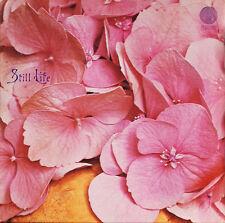 STILL Life-same (vertigini UK - 1970) - PAPERSLEEVE-repuk-CD