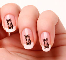 20 Adesivi Unghie Nail Art Decalcomanie #319 - Chihuahua Just peeling & stick