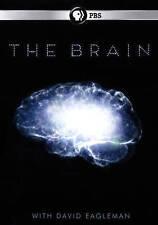 The Brain with David Eagleman (DVD, 2015)
