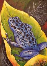 Blue Poison Dart  Frog, Frogs, Rain Forest, Toad, Toads,  Nature  ACEO by Vicki