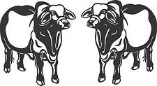 Brahman Bull Stickers 2 x 200 x 180 Quality Stickers UV rated