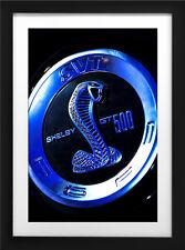 2013 Ford Mustang Shelby GT500 Photo Art Print 13x19 Muscle Car Cobra Carroll