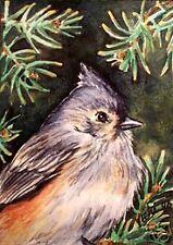 Tufted Titmouse Song  Bird   O/E Print ACEO by Vicki