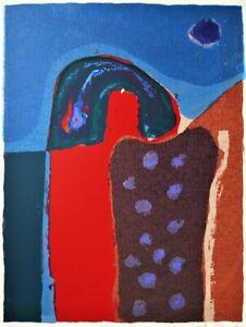 Shaike SNIR Relics - Original Signed Screenprint, Vibrant Abstract Art, Modern