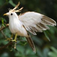 New Fake Artificial Bird Realistic Home Decor Spadger Taxidermy Sparrow #2