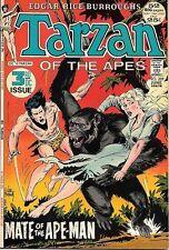 Tarzan Comic Book #209, DC Comics 1972 VERY FINE