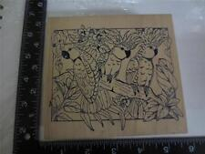 3 Cockatiel ? tropical birds on branch flowers & leaves wood mounted stamp