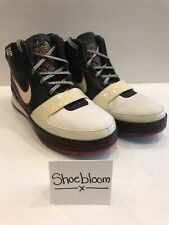Nike Zoom LeBron VI 6 Bred OG LA Lakers Cavs Miami Heat Playoffs PE Size 11.5