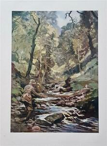 A Devon Stream - Fishing , 1926 Ltd Edn Sportsman's Bag Print by Lionel Edwards
