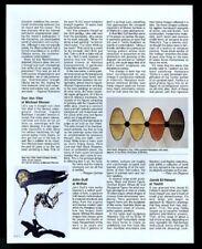 1995 Don Van Vliet Captain Beefheart painting review print article