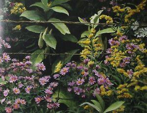 Robert Bateman Art Print Roadside Tapestry Woodshed Winter Ermine Weasel Stoat