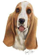 Basset Hound Dog Robert May Art Greeting Card Set of 6