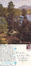1975 BEINN AIRIGH CHARR ROSS SHIRE SCOTLAND COLOUR POSTCARD