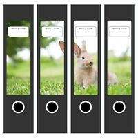 4x Design Ordnerrücken Etiketten mit Motiv Hase im Gras für breite Aktenordner