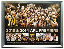 Hawthorn 2014 AFL Premiers 2013&2014 Back to Back Premiership Poster Framed*NEW*