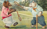 Embossed Tuck Postcard Two Dressed Bears Playing Tennis, One In The Eye~123159