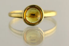 Fossil Insect Genuine BALTIC AMBER Gold Plated Silver Ring 6.5 180606-5
