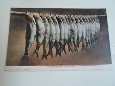 Rare Vintage Postcard YARMOUTH BLOATERS Yallop's Series Franked+Stamped 1906